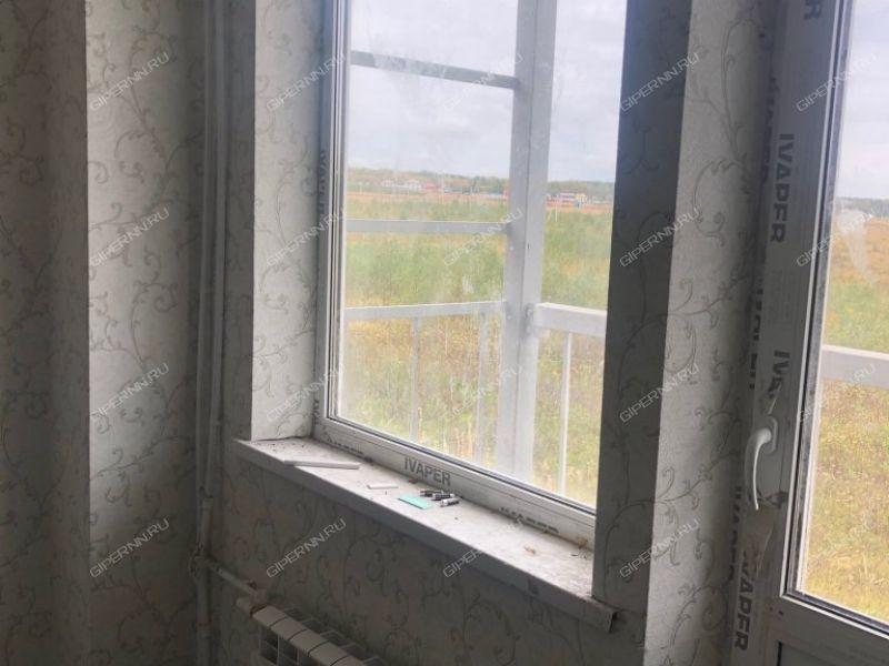 двухкомнатная квартира на Сергея Малышева дом 22 деревня Берёзовка