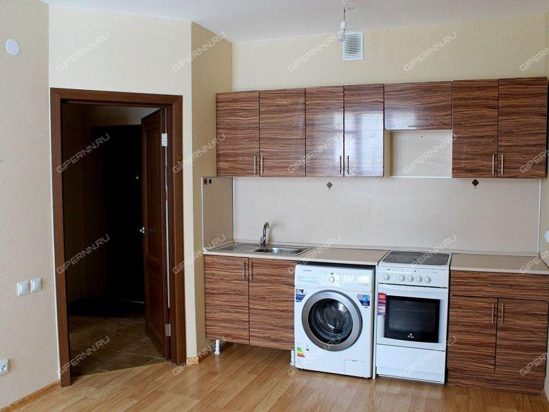 однокомнатная квартира на улице Черкесская дом 3 деревня Анкудиновка