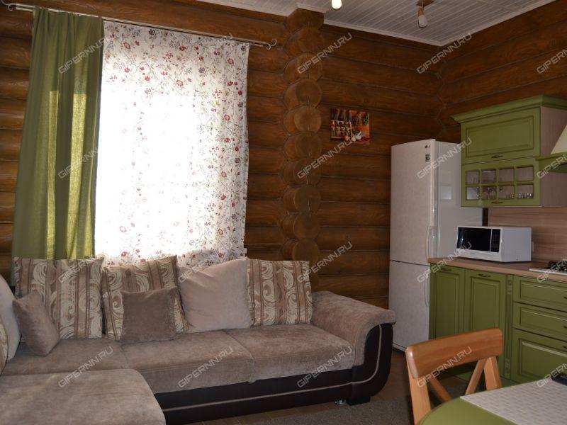 дом на Тихий переулок деревня Бурцево
