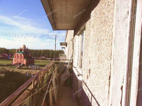 1-komnatnaya-derevnya-yasency-pavlovskiy-rayon фото