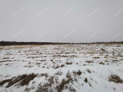 derevnya-prudy-bogorodskiy-municipalnyy-okrug фото