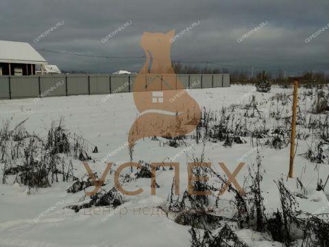 selo-dudenevo-bogorodskiy-rayon фото
